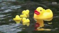 儿童歌曲《数鸭子》数鸭歌