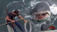 第90期 世界仅存的噬人鲨 巨型杀手