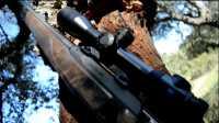 獵奇·原版 西班牙狩猎游记Ⅱ