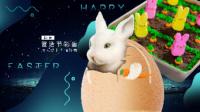 兔子胡萝卜蛋糕 140—《日日煮 2017》
