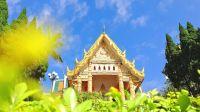 芒果看天下 第41集:新奇!探秘中国大陆首座泰国金佛殿
