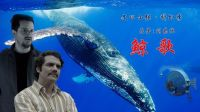 """5分钟速读刘慈欣1999年""""将鲸鱼改造成潜艇""""的科幻作品《鲸歌》 22"""