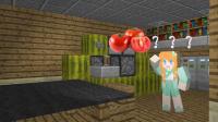 【大橙子】我的世界解谜-谁偷了我的番茄罐头!