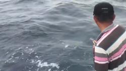 出船海钓章红鱼,钓到了好大条的鱼,钓鱼人上鱼真是厉害了