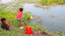哥哥弟弟一起出来钓鱼,抛了几竿,看看他们钓了几多?