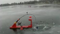 冰钓时拍到,钓鱼还赔了杆,太难了!