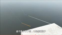 农村年老野湖钓鱼,遇到大货拉都拉不动,年老:预计七八斤