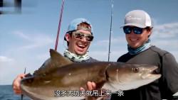 八千块租游艇钓鱼,钓上来200斤金枪鱼,你说赚了还是亏了?