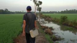 印度小伙挑战田边水渠钓鱼,第一次这样的鱼竿能有用吗