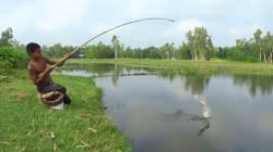 农村小伙田边钓鱼,抛了几竿,看看他钓到了啥鱼?
