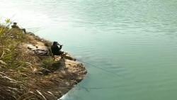 这是村长的专属钓台,就算他不来,也没人敢上去钓鱼!