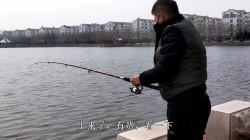 小伙2000亩湖面钓鱼,竿子一扔真远,竿稍有消息?拉到岸边真不小