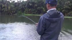 野外钓鱼,半个多钟的拉锯战,终见水下巨物