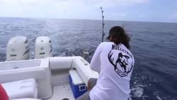 海上钓鱼,资源太丰盛了,羡慕