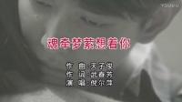 魂牵梦萦想着你-倪尔萍【KTV-天子俊作品】