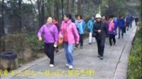 (视频)烟雨张家界、绝美金鞭溪.mp4
