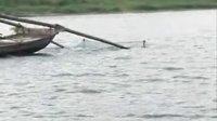 五河县怀洪新河被确定为国家级水产种质(新银鱼)资源保护区