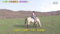 北海道骑马散步 一人野外烤肉