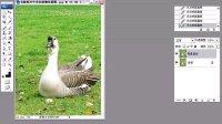 Photoshop教程21 去除照片中多余的物体_PS人物数码照片处理技法视频教程