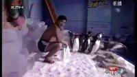 《新闻夜航》冰海与企鹅共泳  严寒向冰岩攀登