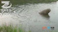 牛人故事之农民达芬奇陶相礼一 山寨潜水艇试潜惊恐现场
