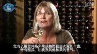 WSET 3分钟课程 - New Zealand 新西兰葡萄酒