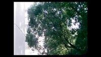 武汉民政职业学院婚庆策划与服务专业09级学生孙嘉作业