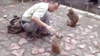 盘锦兴隆台耍猴 (2)