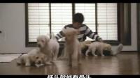 《天才眼鏡狗》唱出狗狗夢,黃渤你腫麽看?