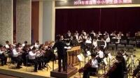 2014年青岛市中小学生器乐展演-----5月24日城阳实验中学