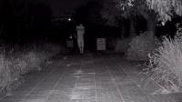 英德0330-300W-双灯-8MM录像效果 高清