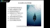 资深自由潜水员三豆:一吸一呼间 潜入深海
