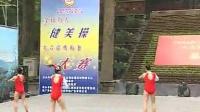2004全国健美操大众锻炼标准大赛--小学组四级比赛视频