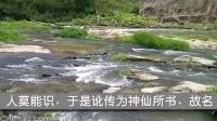 仙字潭摩崖石刻-讹传为仙字天书的遗存古石刻(福建漳州华安县沙建镇)