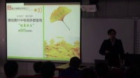高二生物《其他植物激素》教學視頻-曾旭東-2014年中南六省(區)生物教學研討會