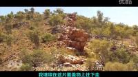【徒手猎汉】澳洲北区打野幼崽野狗和砂巨蜥  @柚子木字幕组