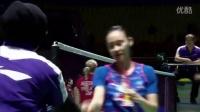 2015中国羽毛球公开赛1/4决赛精华
