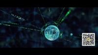电影公嗨课111:二十年来最牛的科幻电影