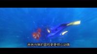 3分钟看完《海底总动员1》12