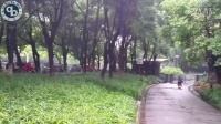 上海市普陀区新村路1717弄37号1401室