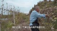 葫芦爷爷真人3D版 上海城隍庙秀绝活征服众人 637