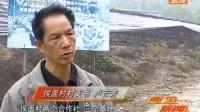 上林县:结对帮扶决心强 精准扶贫显成效