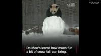 潘达利亚熊猫🐼人堆雪人_标清