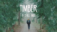 ◤ MashMike ◢ Timber - A Chill Mix