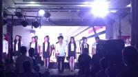 宏伟尚艺-团队展示-2015明星演唱会