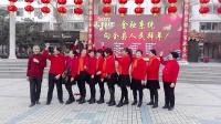 镇平红霞电力广场,向全县人民拜年