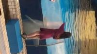 我的关女人和海豚