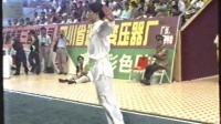 1993年第七届全运会武术套路比赛 男子长拳 021 王志勤(天津)