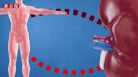 青岛乙肝事件曾封锁消息 3D释疑透析如何染病