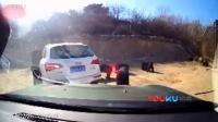 【拍客】八达岭野生动物园轿车遭黑熊围堵 熊爪伸进车